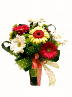 Gerbs N\' Dots Bouquet