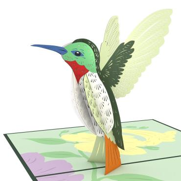 Humming Bird LovePop Card